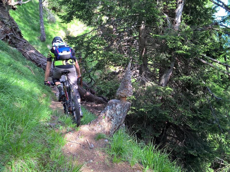 <b>vacanze mountain bike Trentino</b>