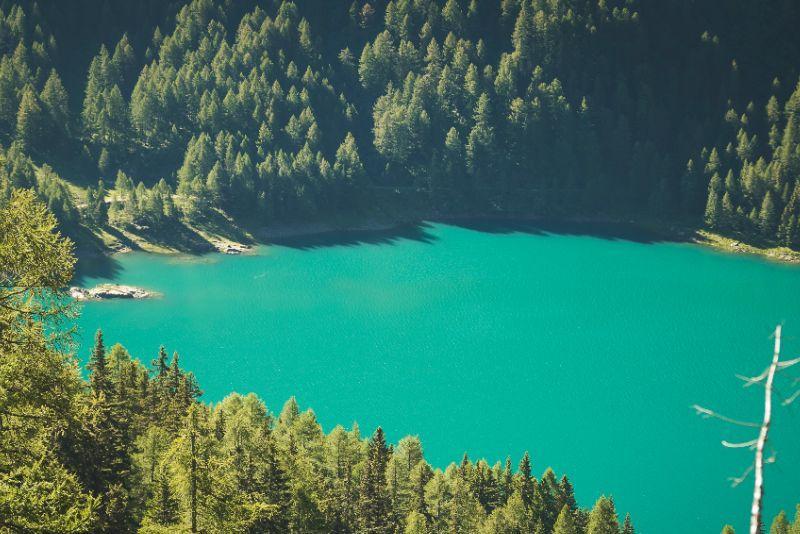 <b>Val di Sole  Lago di Pian Palù ph Sory traveller (7)</b>